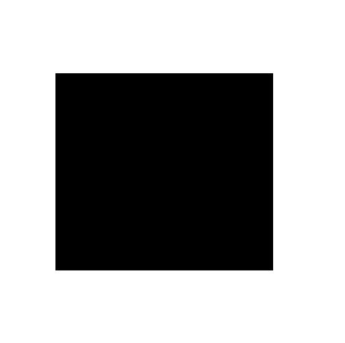 brandicon1