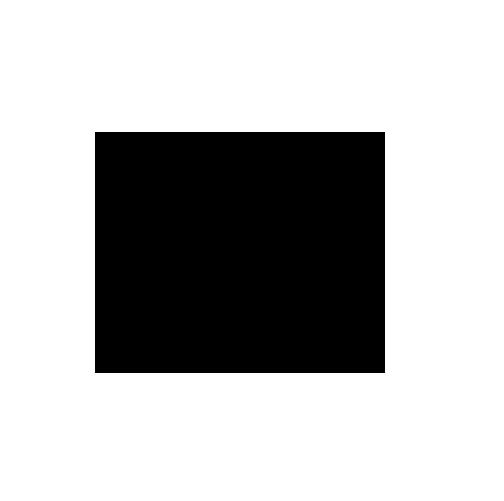 copyicon