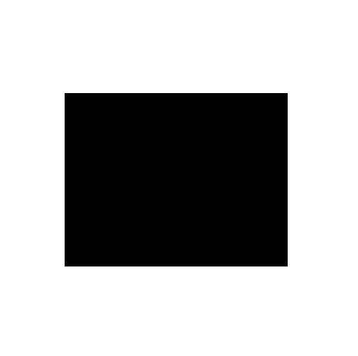 seoicon